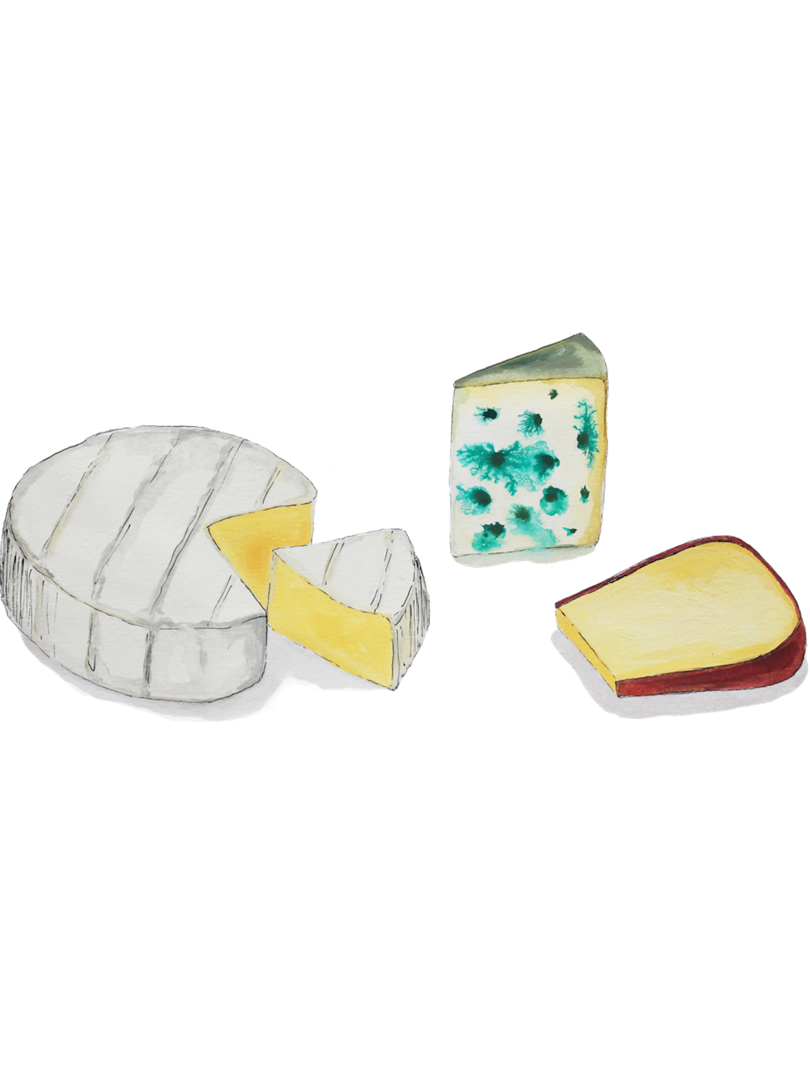 Illustration of a selection of three different cheeses, including Brie, Blue and Edam